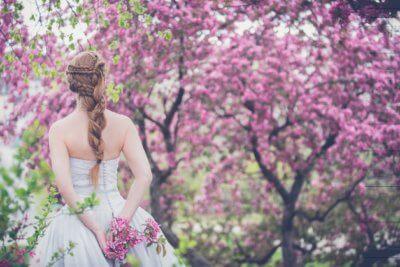 Kirschblüten romantisch
