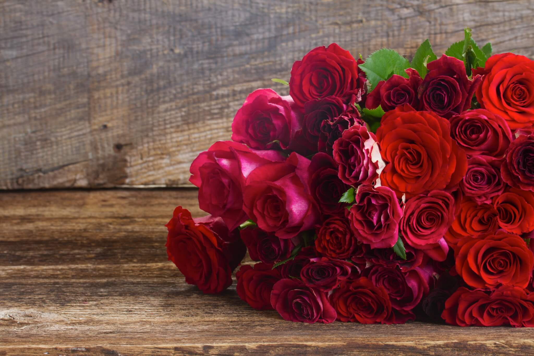 Romantische rote Rosen