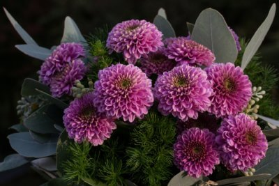 Strauss Violett Herbst